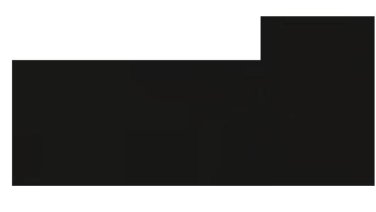 Samen der Pusteblume fliegen